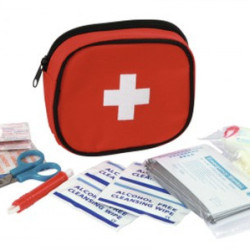 Borsa Primo Soccorso - Kit di pronto intervento per cani
