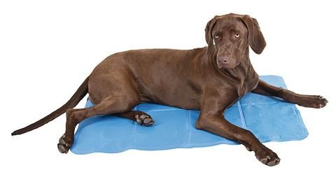 Tappetino raffreddante per cani cool relax di piccola - Tappetino riscaldante per cani ...