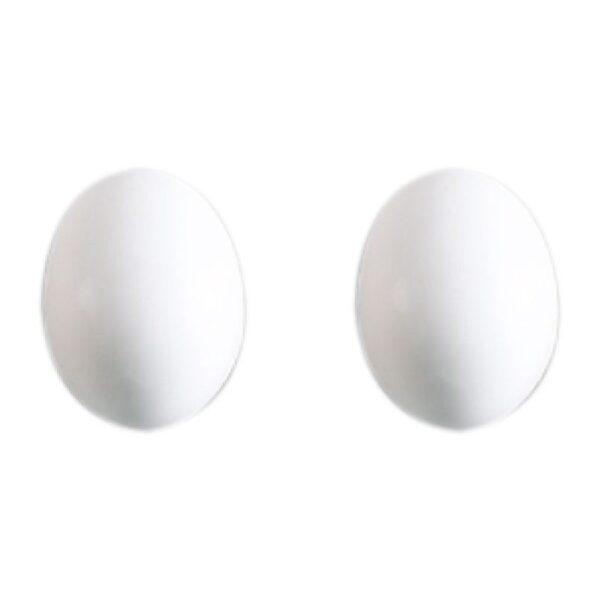 uova grandi parrocchetto I044