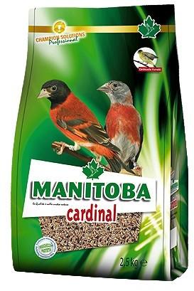 manitoba cardinal per cardinal