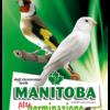 Manitoba Alta Germinazione sacco