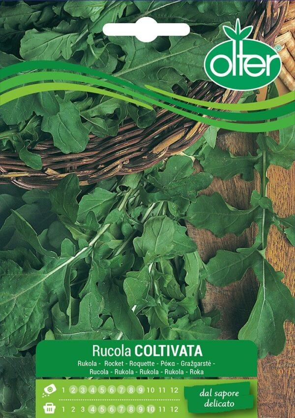 Semi rucola da orto coltivata
