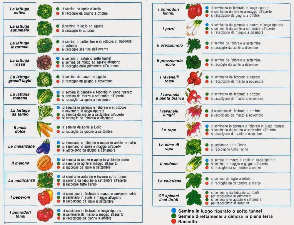 Calendario Piante Orto.Calendario Semina Degli Ortaggi Tecniche E Consigli