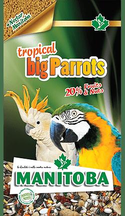 Manitoba Tropical Big Parrots con nectar manitoba