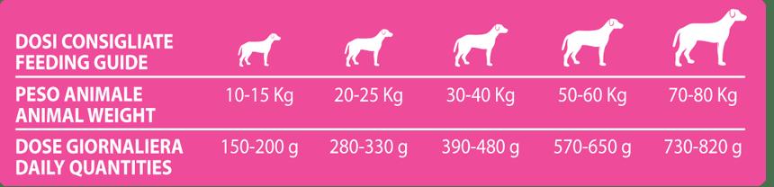 forma 360 adult medium agnello e riso