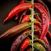 exicco listello essiccazione peperoni details