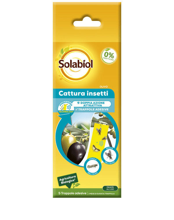 solabiol cattura insetti olivo