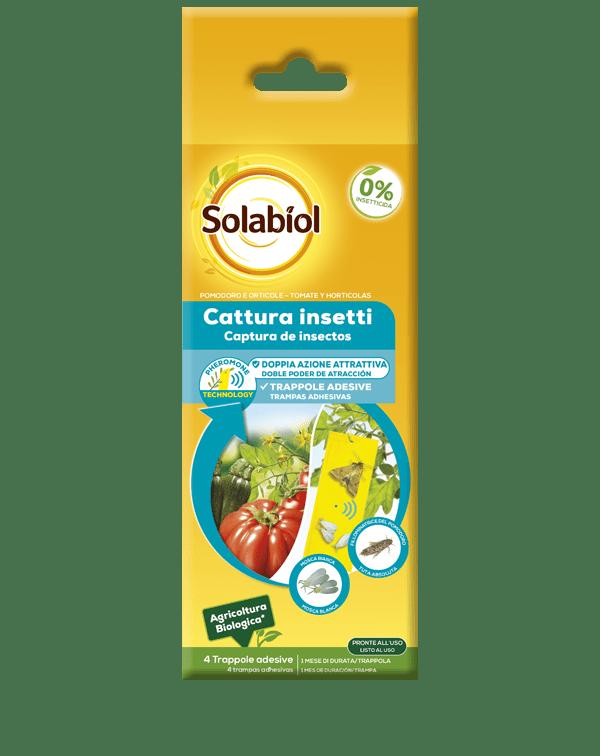 solabiol cattura insetti pomodoro e orticole