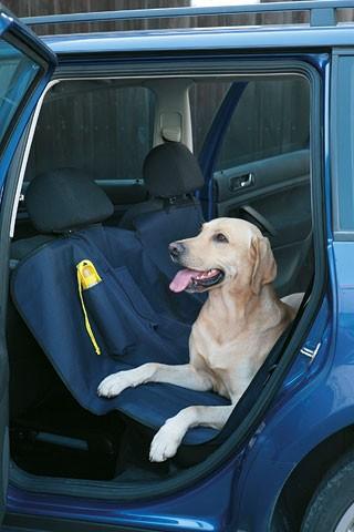 coprisedile per auto cani