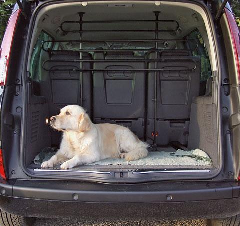 griglia per cani auto protezione