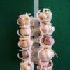 listello porta aglio in plastica