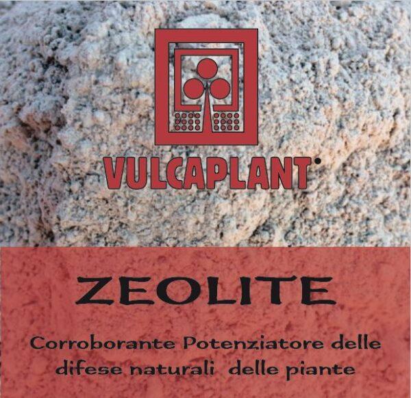 zeolite fungicida naturale bio