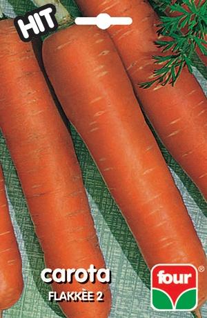 semi di carota flakkée