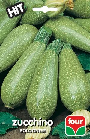 semi di zucchino bolognese four sementi